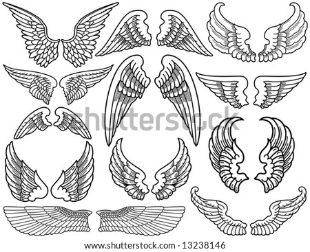 Twelve Sets of Black and White Angel Wings - stock vector