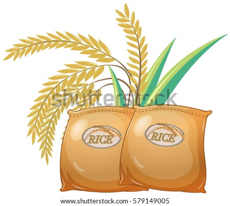 Two bags of rice illustration