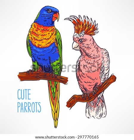 Two beautiful exotic colorful parrot. hand-drawn illustration - stock vector
