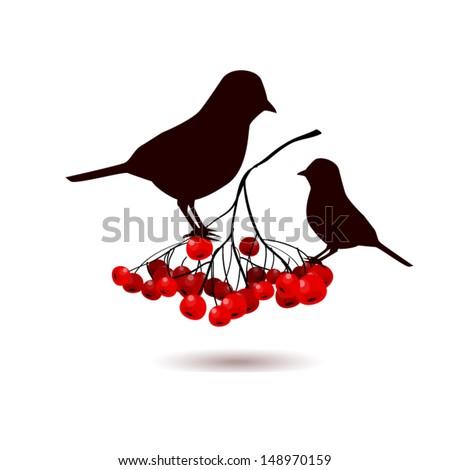 Two birds on a mountain ash branch - stock vector