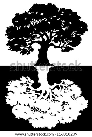 Two black and white trees. Vector illustration - stock vector