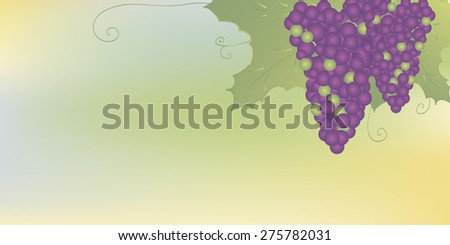 Two bunches of dark  grapes with leaves on soft blurred background. .Background for web site, brochure etc. - stock vector