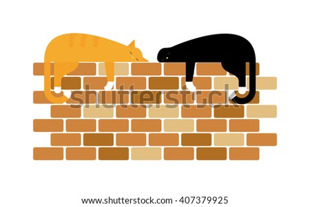 Two cute domestic short hair cats sleeping snuggle on wall. Two fluffy cats gray beautiful kitten and breed scottish-fold two cats. Domestic two cats and two cats friends adorable cute feline. - stock vector