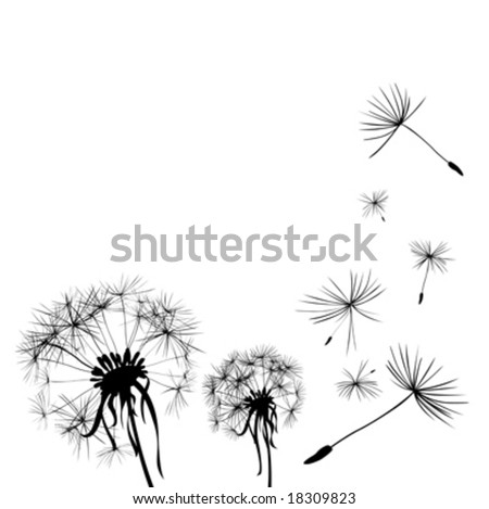 two dandelions in wind on light blue background - stock vector
