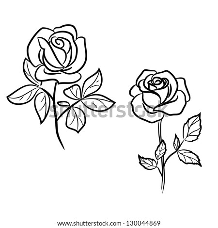 Two dark  roses on white - stock vector