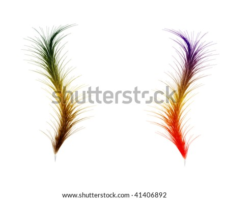Two Feather for you - stock vector