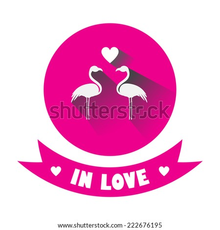 Two flamingos in love. vector card  - stock vector
