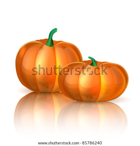 Two fresh pumpkins