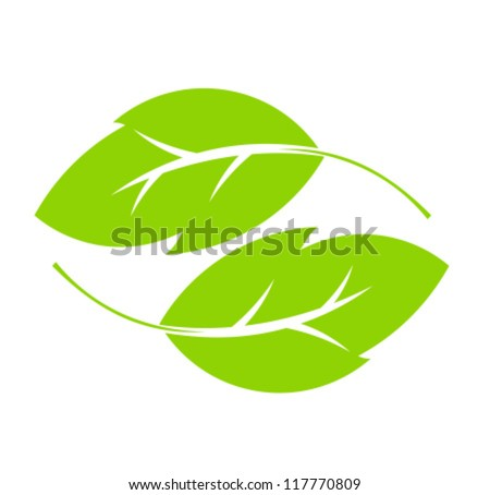 Two green leaves. Vector illustration - stock vector