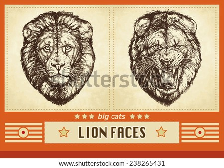 Two hand drawn male lion heads calm and roaring faces grunge vector illustration with typographic elements and an orange decorative designed frame - stock vector