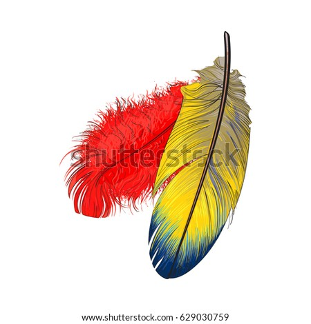 Parrot Realistic Drawing Stock Images, Royalty-Free Images ...