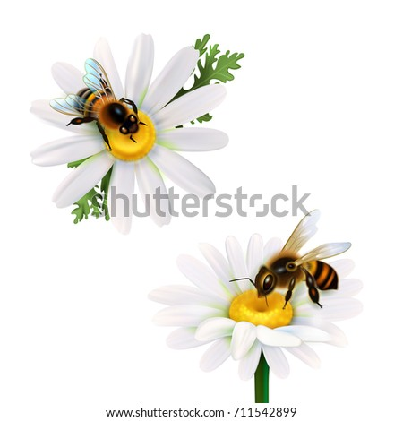 Nectar Stock Images Royalty Free Images Amp Vectors
