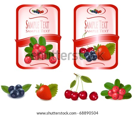 Two red labels with berries and cherries. Vector. - stock vector