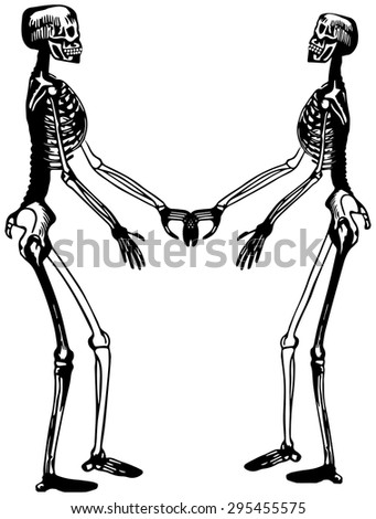 Two skeletons - stock vector