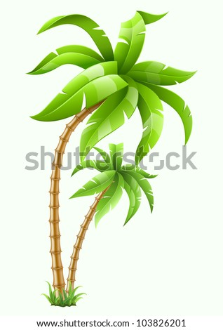 two tropical palms isolated on white background. Vector illustration. EPS10. Transparent objects used for shadows and lights drawing. - stock vector