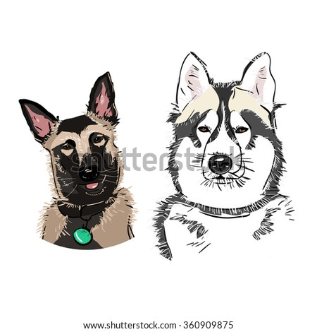 Two vector dogs heads - stock vector