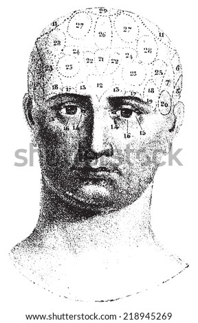 Type cranial given by Spurzheim, front view, vintage engraved illustration. Usual Medicine Dictionary - Paul Labarthe - 1885.  - stock vector