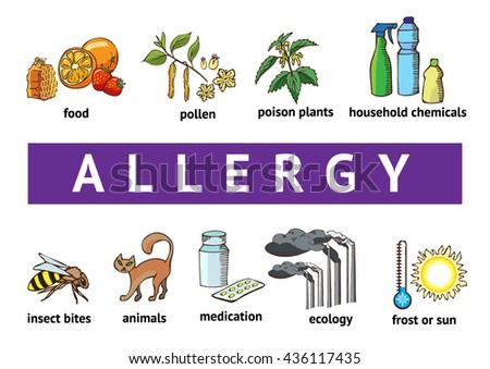 Types of allergies - stock vector