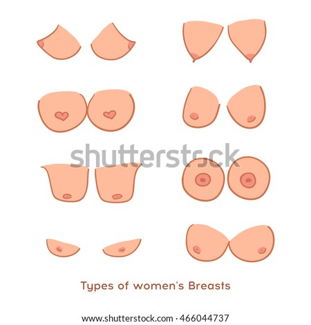 Why Do Some Guys Prefer Small Breasts Heres Every