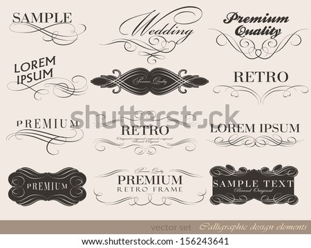 typography, calligraphic design elements/ page decoration/ vector illustration