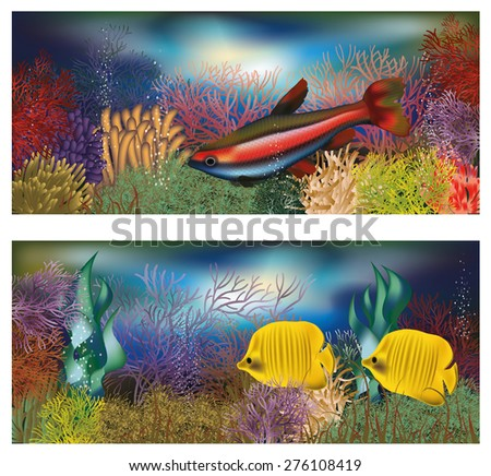 Underwater banners with tropical fish, vector illustration - stock vector