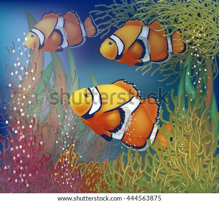 Underwater card with clownfish, vector illustration - stock vector