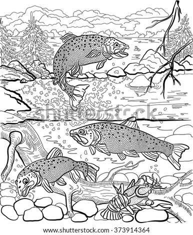underwater life on river trout cancer stock vector 373914364 trout fish coloring pages