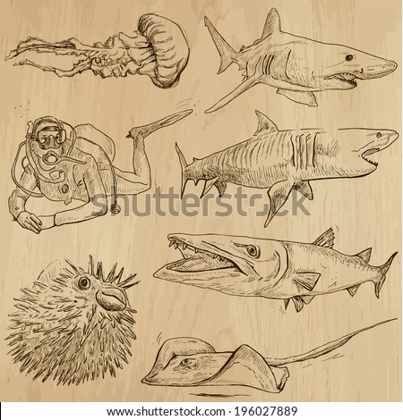 Underwater, Sea Life (vector set no.2)  - Collection of an hand drawn illustrations. Description: Each drawing comprise of two basic layers of outlines, the colored background is isolated. - stock vector