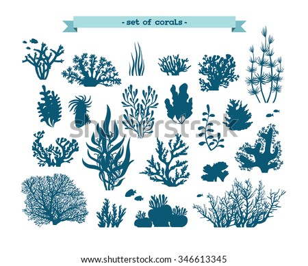 Underwater set - silhouette of corals and algae on a white background. - stock vector