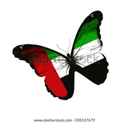 United Arab Emirates flag butterfly - vector - stock vector