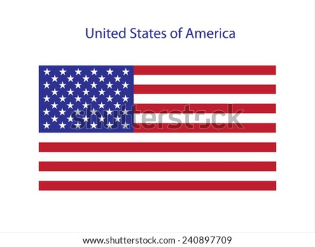 USA flag.Vector template. - stock vector