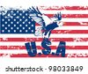 Usa flag with eagle - stock photo