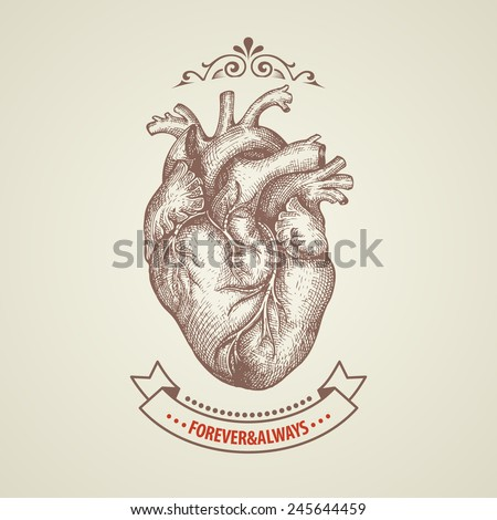 Valentine's Day card. Retro engraving heart - stock vector