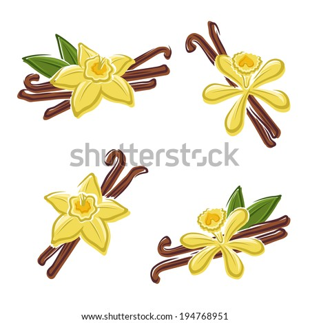 Vanilla set. Vector - stock vector