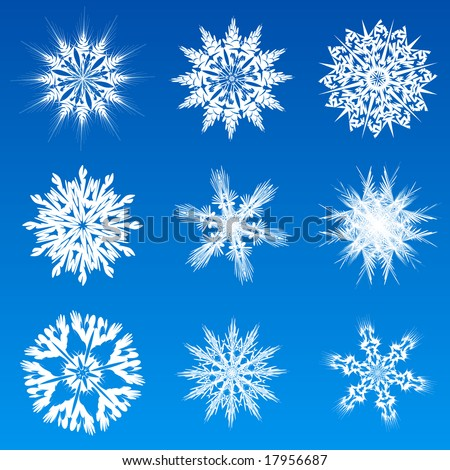 Variations of christmas snowflake - illustration, vector - stock vector