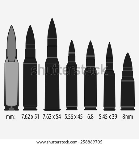 Various bullets, war, danger, weapon, sectional view, Vector illustration  - stock vector