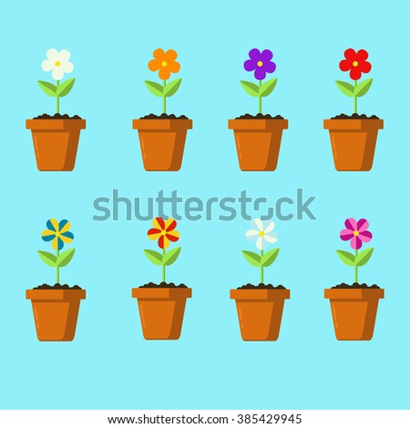 Various colored flowers in pots. Vector illustration. illustration on blue background