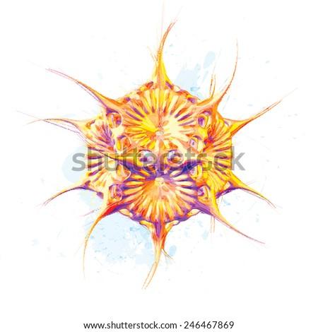 Vector abstract radiolaria watercolor style - stock vector