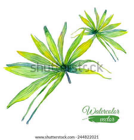 Vector abstract watercolor banners with palm leaves and flowers. Design template with place for your text. Can be used for web pages, identity style, printing, invitations, banners, cards, leaflets. - stock vector
