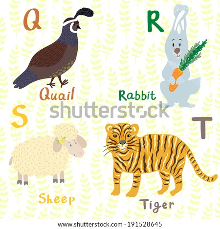 Vector animal alphabet with cute cartoon characters: quail, rabbit, sheep, tiger. Letters Q-T. - stock vector