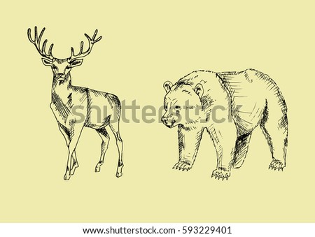 Vector Line Art Animals : Vector animals illustration line art stock