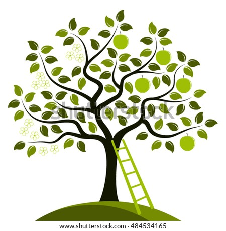 bare apple tree clipart. vector apple tree in two seasons and ladder isolated on white background bare clipart