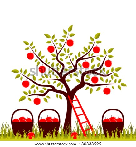 vector apple tree, ladder and baskets of apples - stock vector