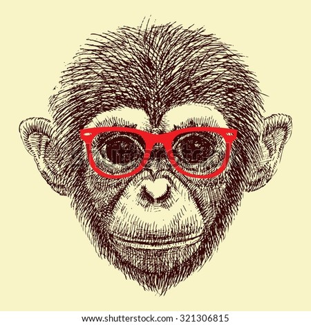 vector art handmade  illustration monkey  glasses, iarangutang, chimpanzees, symbol of the year 2016, new year, solated object,  - stock vector