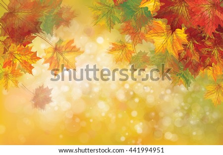 Vector autumnal leaves on bokeh background, blurred effect. - stock vector