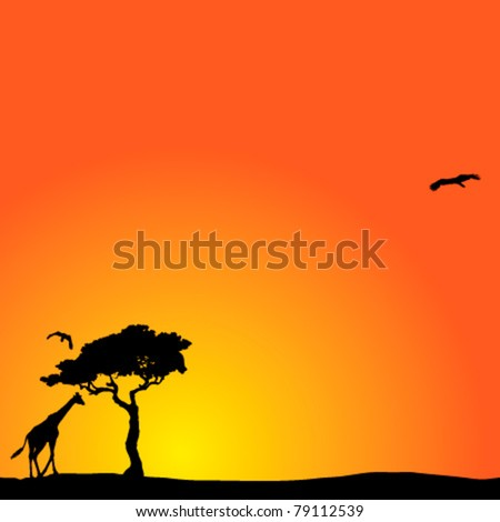 Vector background with African sunset - stock vector