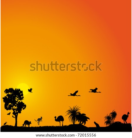 Vector background with Australian plants, birds and animals