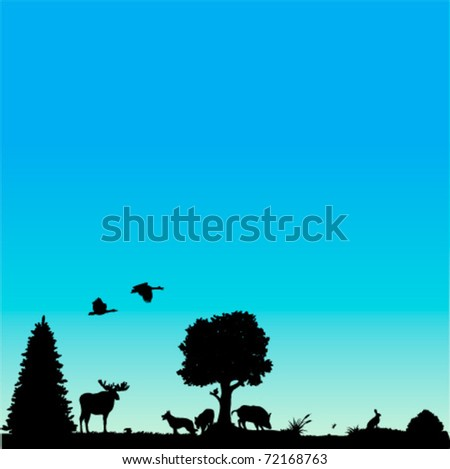 Vector background with European wildlife : plants, birds and animals - stock vector