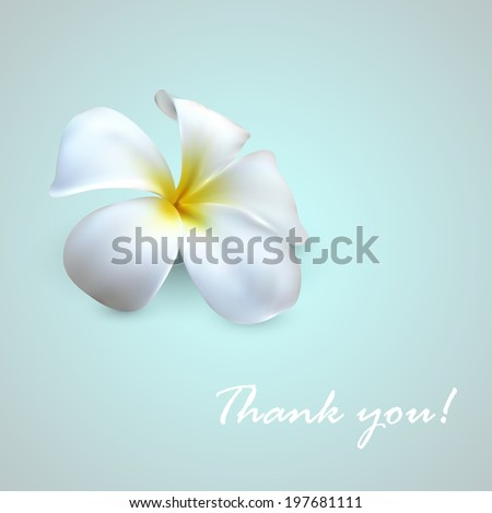vector background with exotic frangipani flower. Thank you! - stock vector