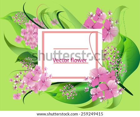 vector background with flowers pink hydrangea design for holidays, celebrations, weddings. - stock vector
